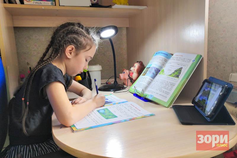 Дистанционное образование в Добрянском округе продлено до 15 мая