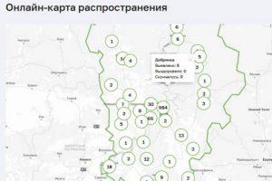 Ещё 2 инфицированных в Добрянском округе