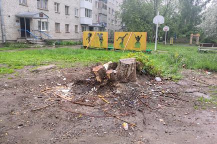 В Добрянском округе уберут «дикие» свалки