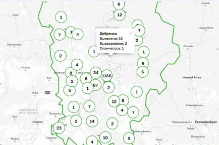 Ещё один заразившийся коронавирусом в Добрянском округе