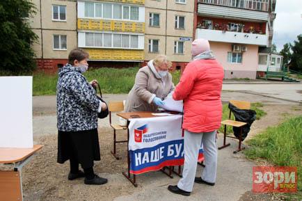 «Дворовое» голосование в Добрянке