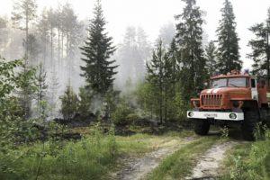 Добрянцам ограничили выход в лес
