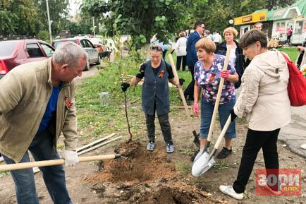 В Добрянке посадили деревья в память о воинах