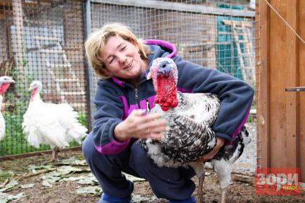 Жительница Добрянского округа нашла своё призвание в фермерстве