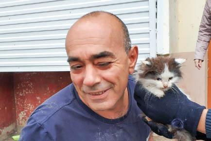 Неравнодушные жители Добрянки спасают животных