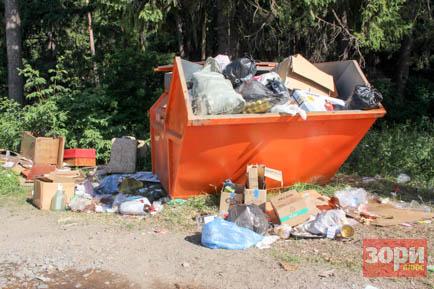 В Добрянском округе установят контейнеры