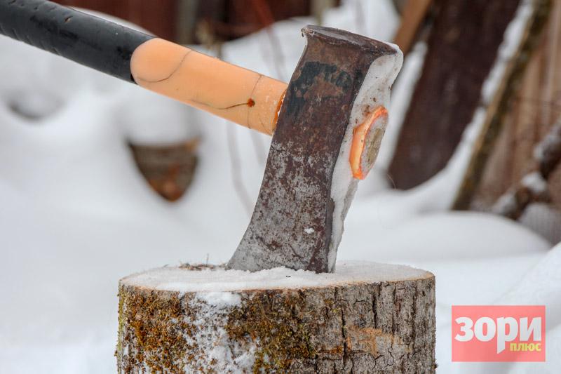 Жителя Добрянки осудили за незаконную вырубку деревьев